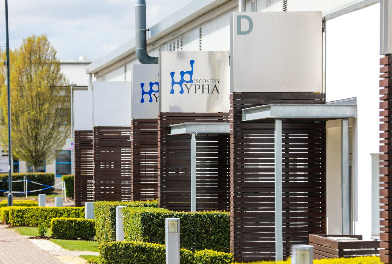 Hypha Offices