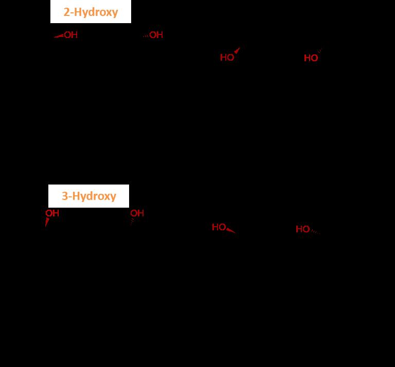 Ruxo metabolties diagram