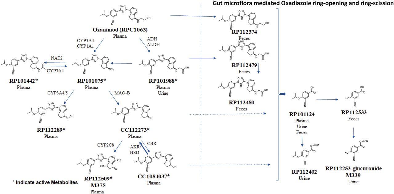 ozanimod metabolism case study image