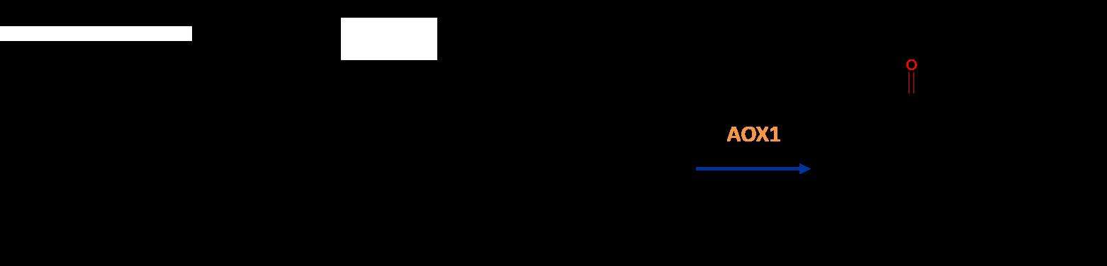 Aldehyde oxidase (AOX) metabolites diagram