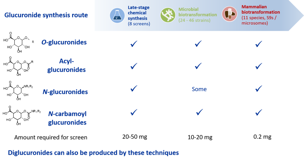 Glucuronide synthesis methods infographic