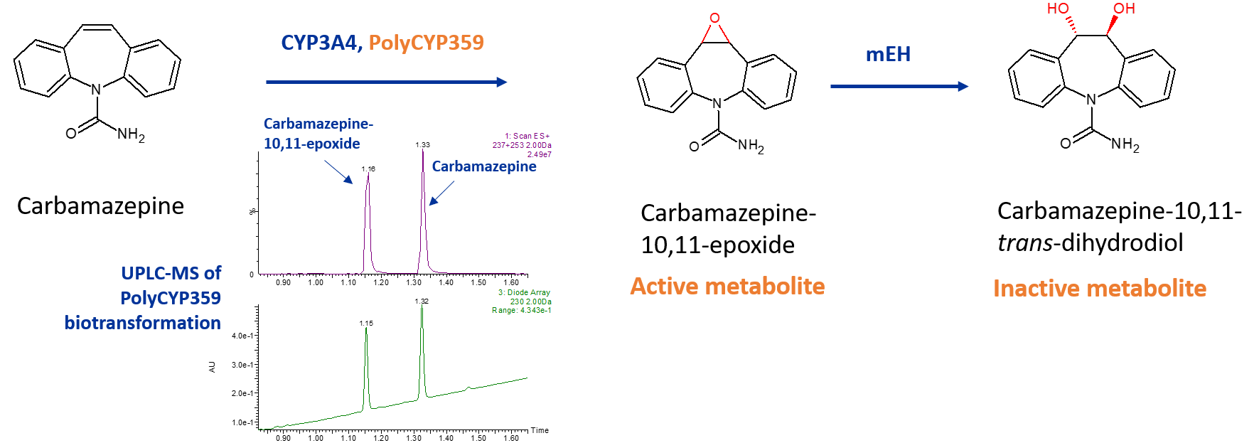 Dihydrodiol and epoxide metabolites of carbamazepine
