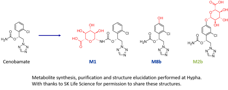 Metabolites of the drug cenobamate made by Hypha Discovery